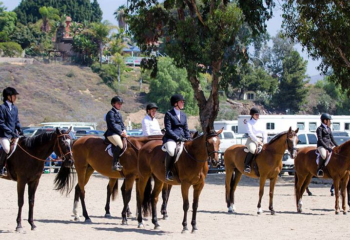 sunnyside saddle club event