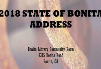 2018-state-of-bonita